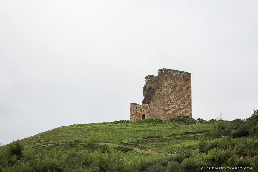 20160515-3B8A7799-Cantabria1