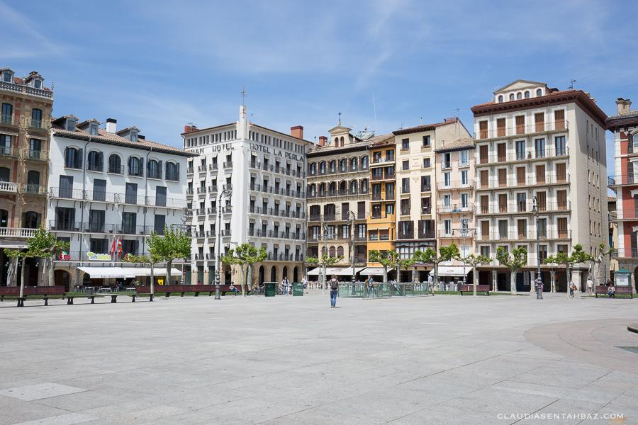 20160517-3B8A8246-Pamplona