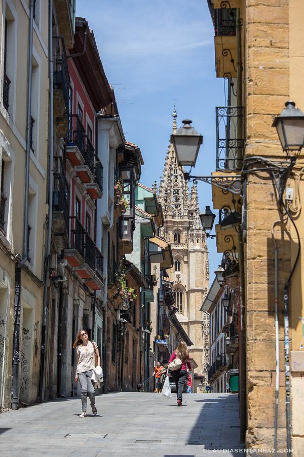 20160520-3B8A8572-Oviedo