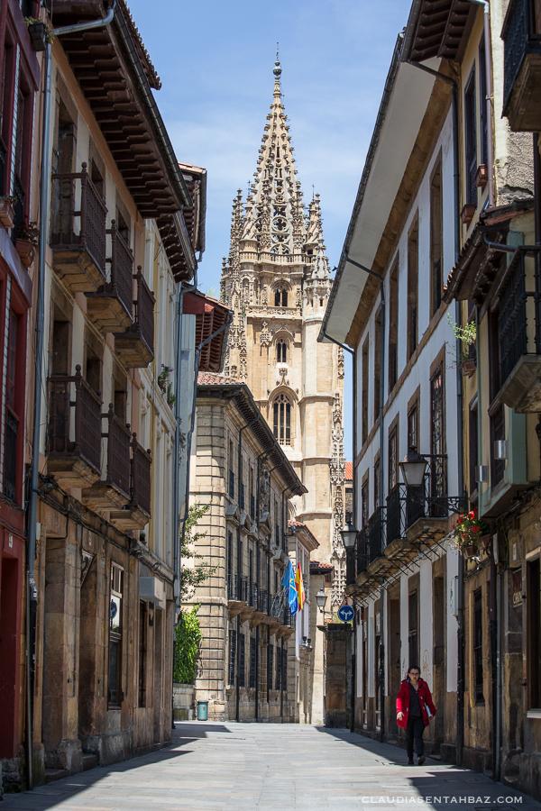 20160520-3B8A8575-Oviedo