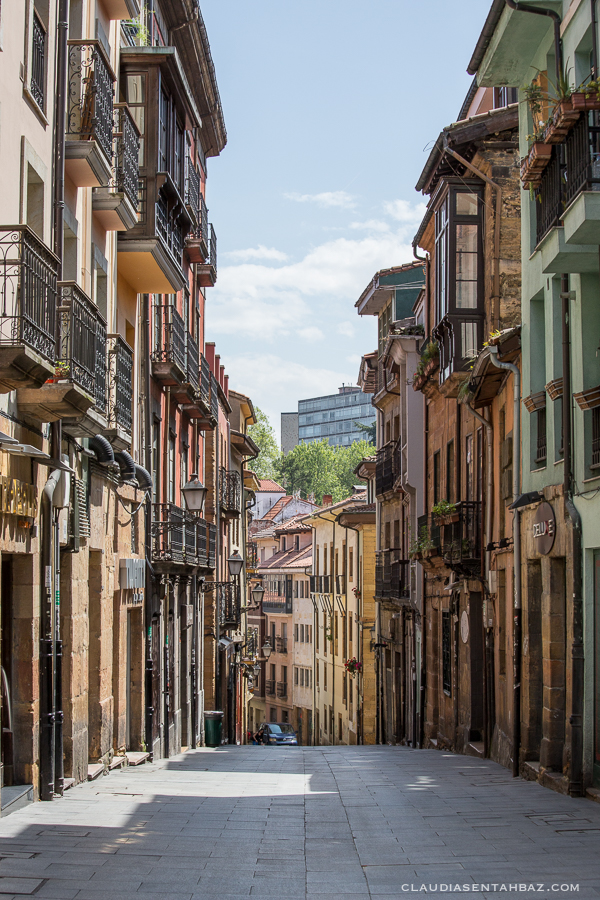 20160520-3B8A8587-Oviedo