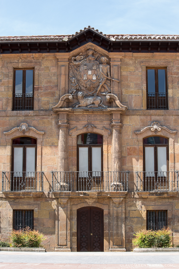 20160520-3B8A8611-Oviedo