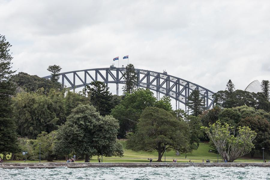 20161019-3B8A3423-Sydney6