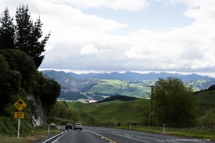 20161021-3B8A3605-NZ2