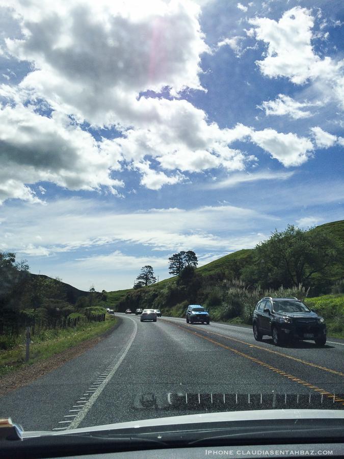 20161023-IMG_0492-NZcel