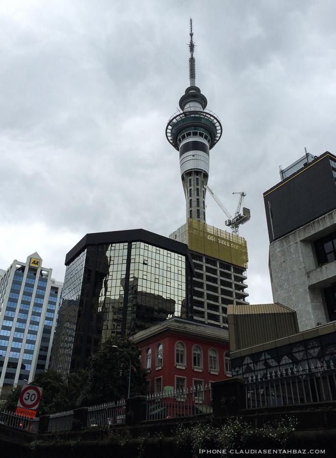 20161024-IMG_0499-NZcel